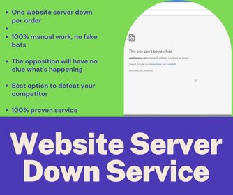 Website Server Down Service